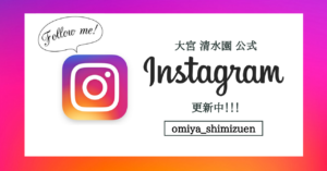 Instagram バナー